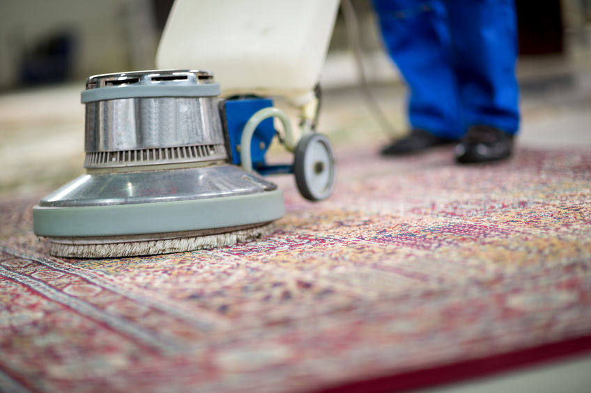 Keeping Your Rugs Clean when you have Children and Pets