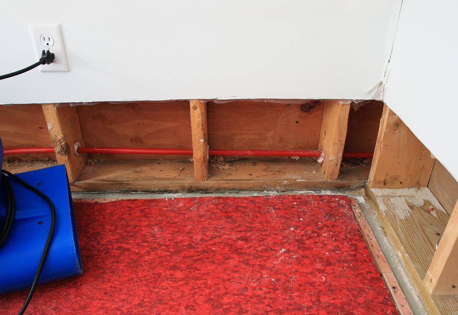 Unusual Causes of Water Damage in Your Home
