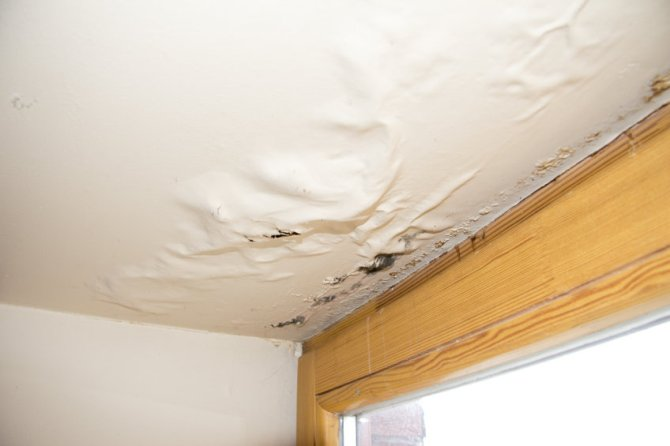 How to Boost Your Home's Defenses and Prevent Fall and Winter Water Damage