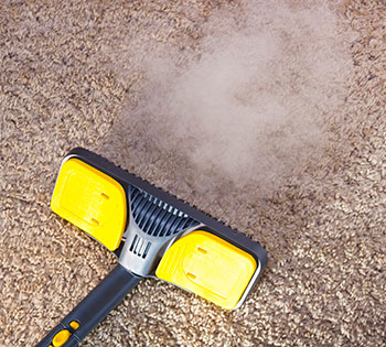 Reasons To Hire A Pro Instead Of Cleaning Your Own Carpets & Upholstery