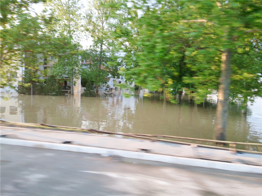 Prepping Your Home for the Storm: Getting Ready for Extreme Rainfall
