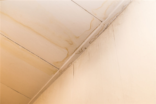 How Is Mold Removed From Ceiling Tiles?