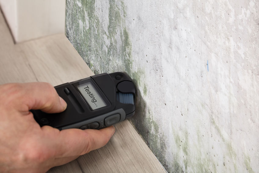 3 Signs You Have a Hidden Mold Problem