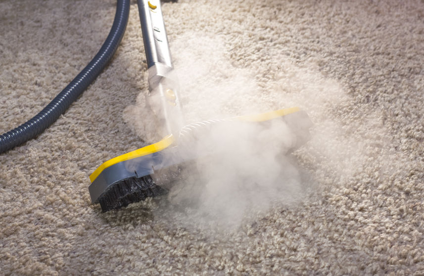 Three Benefits of Professional Carpet